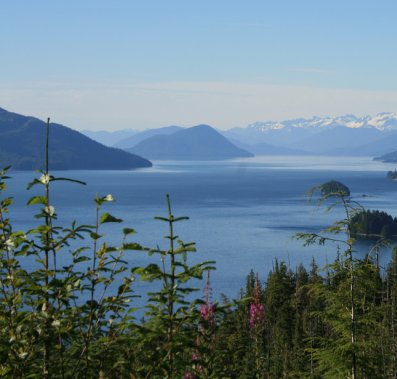 Camping and dining in Wrangell Alaska